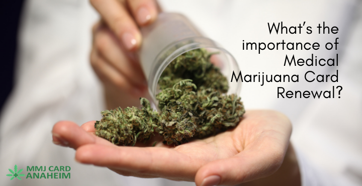 What's The Importance of Medical Marijuana