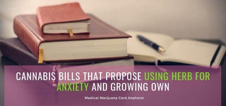 Cannabis Bills For Using The Herb For Anxiety