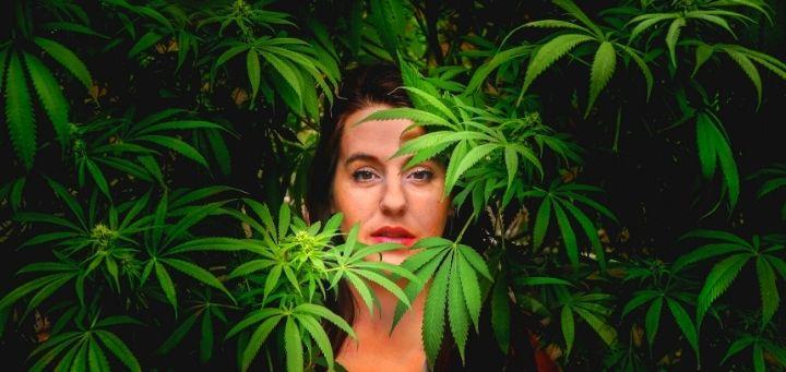 Use Marijuana to Fight These Mental Illnesses